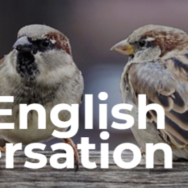 Adding Daily English Conversation To Your Routine